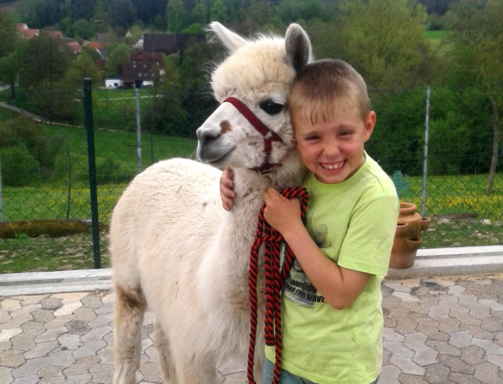 Alpakas und Kinder